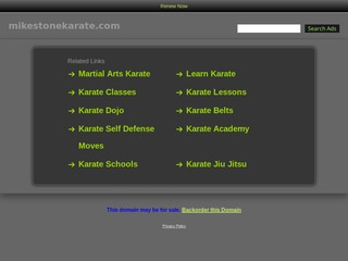 Mike Stone Karate